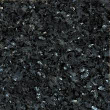 Labrador Bleu 5000